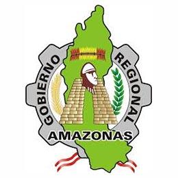 GOBIERNO REGIONAL DE AMAZONAS – ADMINISTRACIÓN PUBLICA